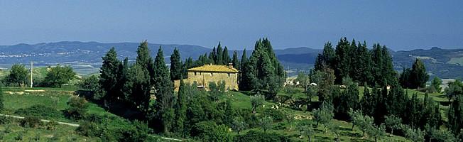 Reisebericht aus Italien (2002): Bardolino - Volterra