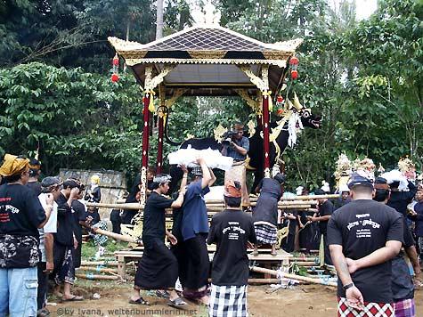 cremation_9