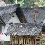 Kampung Naga – Das Drachendorf im Herzen Javas