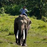 Mein perfekter Tag im Chitwan Nationalpark