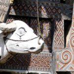 Warum Du Sulawesi jetzt besuchen solltest