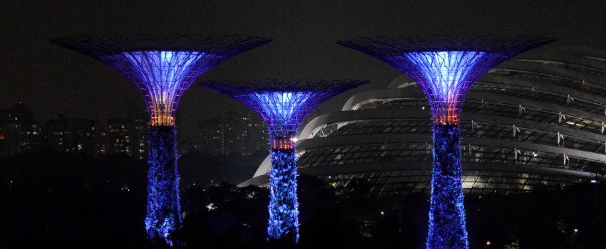 Singapur - Großstadt und Dschungel
