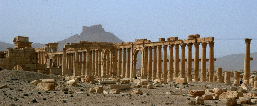 Verloren, doch immer noch eine schöne Erinnerung - Palmyra